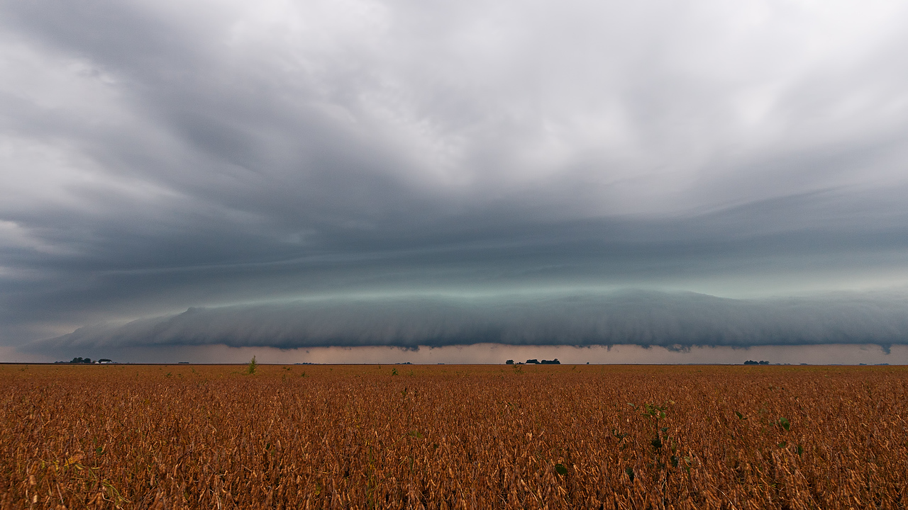 September 9th - Morning arcus in Logan County IL