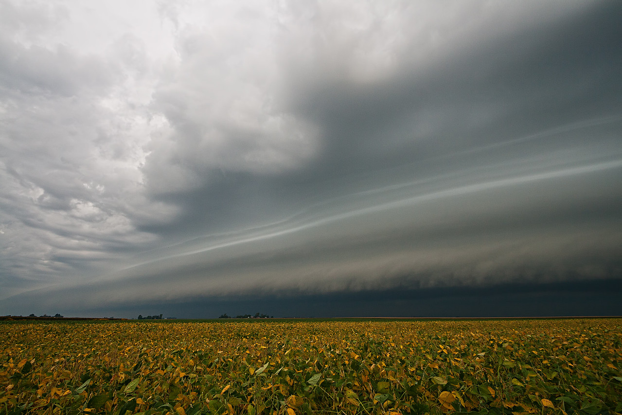 September 4th - NW Macon County IL, 1 of 3 morning arcus (shelf) clouds.
