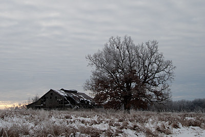 January 14, 2015 - Weldon Springs State Park, Clinton, IL