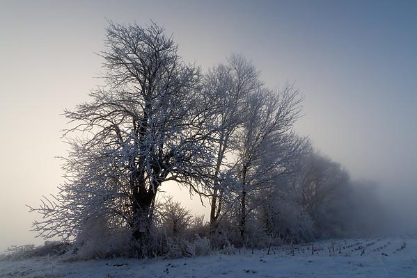 January 23, 2016 - Rural Macon County, IL