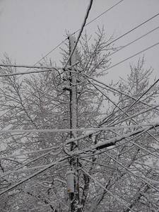 This snow was a bit wetter, aka stickier, as illustrated by the snow on the north facing side of this telephone pole.