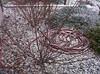 light snow 03 4