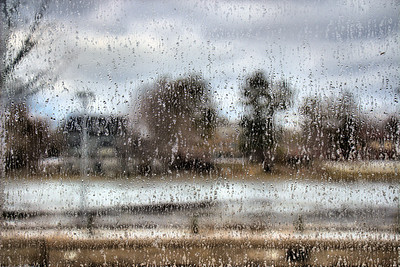 Nicholas Conservatory & Gardens, Rockford, Illinois - Water on Glass Looking Across the Rock River (2.14.2013)
