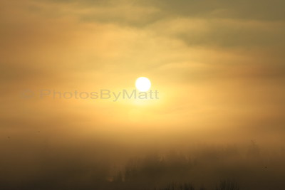 Foggy Sunrise, Lynnwood, WA.