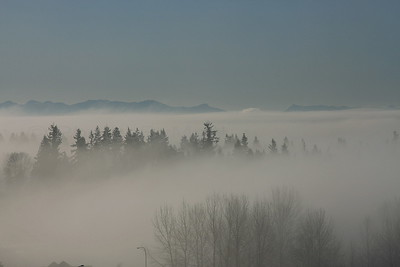 Morning fog in Lynnwood,WA