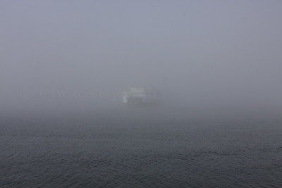Washington State Ferry in the Fog. Mukilteo, WA