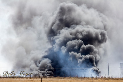 Wildfire Mar 17 17
