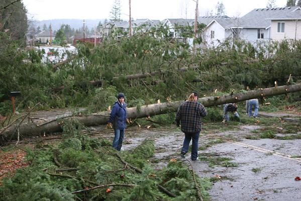 Wind Storm December 2006