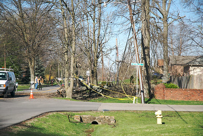 Wind damage in our neighborhood