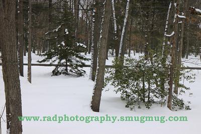 Feb 25-27 Snow 006