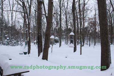 Dec 19 2009 Snowstorm 2 009