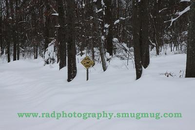Dec 19 2009 Snowstorm 2 036