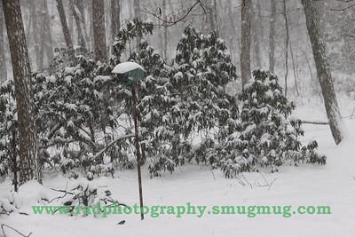 Dec 19 2009 Snowstorm 004