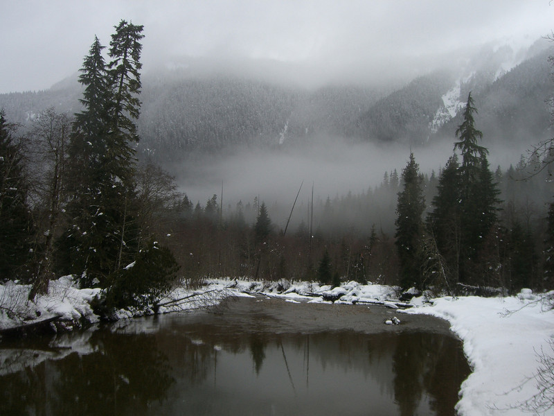 North Fork Nooksack River. February 2008
