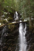 Ranger Falls. Mt Rainier National Park