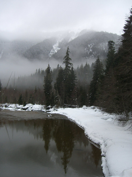 North Fork Nooksack River. February 2008