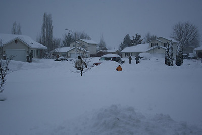 All the neighbors shoveling snow.