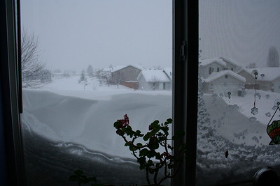 There was a large snow drift so I could not see out my office window very well.