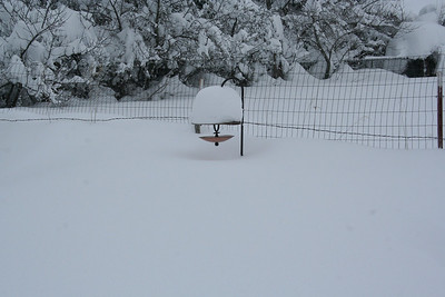 The snow is so high it is almost up to the bird feeder.