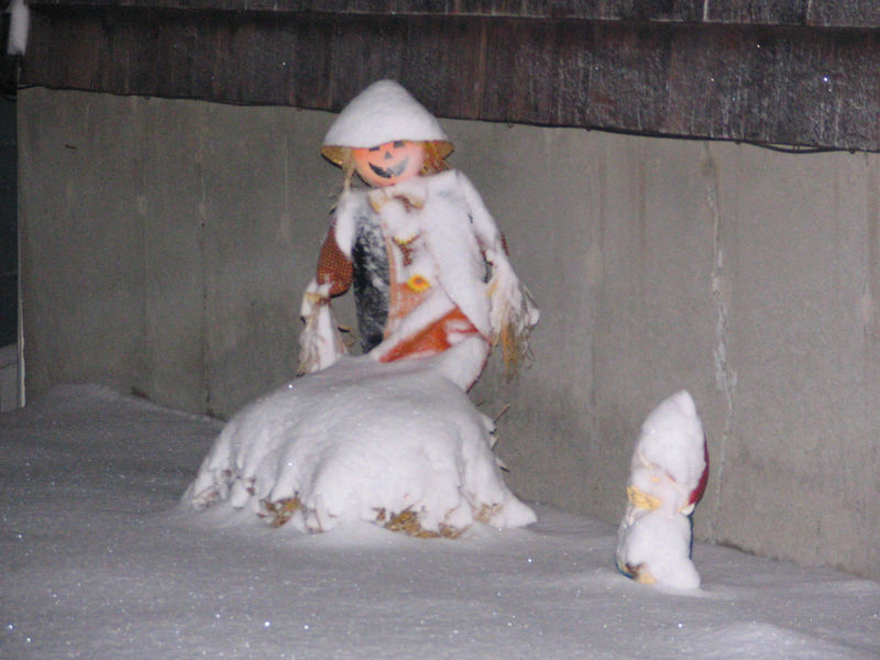 Our pumpkin character (sitting on a hay bale) and our gnome caught in the storm on December 9, 2005.