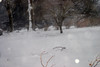 2-10-10-blizzardIMG_4026