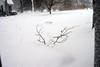 2-10-10-blizzardIMG_4027