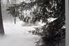 1-10-10-blizzardIMG_4020