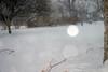2-10-10-blizzardIMG_4025