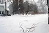 1-10-10-blizzardIMG_4021