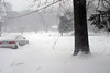 1-10-10-blizzardIMG_4019