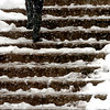 A heavy wet snow fell in Boulder on Friday March 19, the day before the first day of Spring.<br /> Cliff Grassmick / March 19, 2010