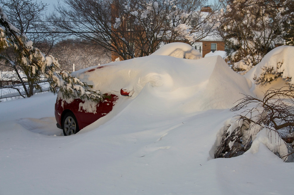 Prius in hibernation