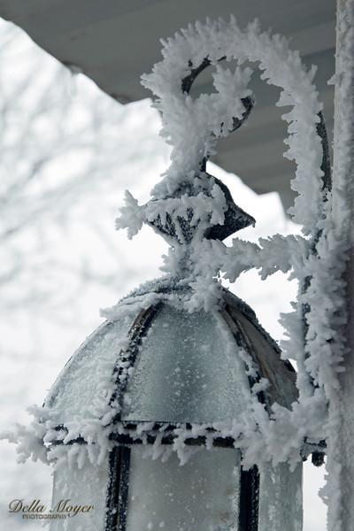 Winter Wonderland 2014