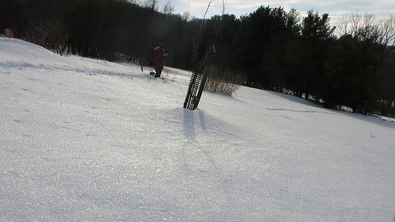 Snowzilla Snowride, January 2016