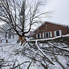 Sugar maple split by heavy snow at Journey Church on the Common in Chelmsford Center. (SUN/Julia Malakie)