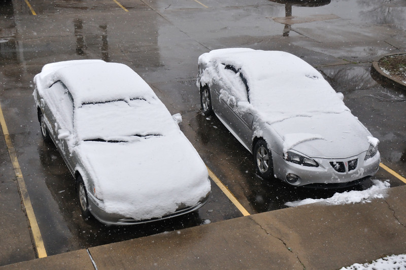 Our cars were covered in snow.