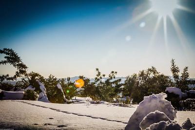A sunny snowy day!