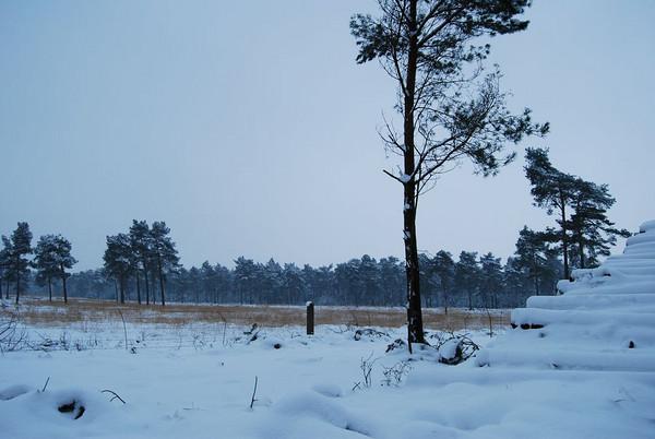 Wonderfull Winterworld Netherlands