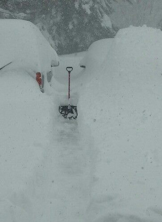 November 2014 Buffalo Snow