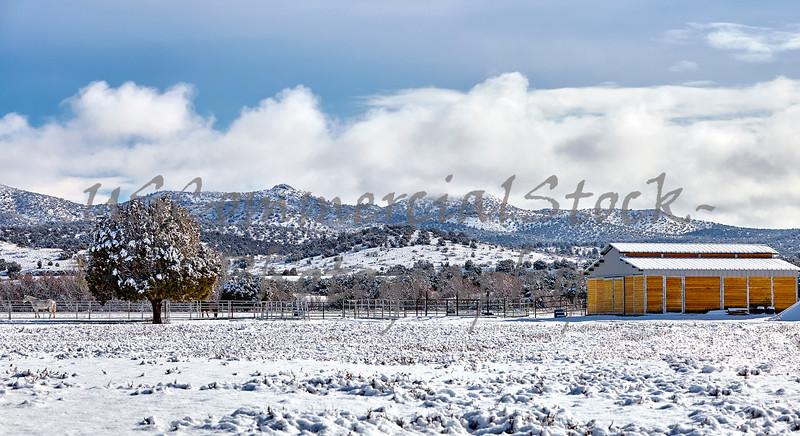 Winter Snow Covered Farm Barn Horse landscape