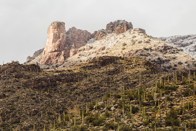 Snow on the Catalinas