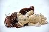 Teddy bears in snow storm