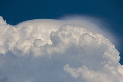 Pileus atop a cumulus cloud