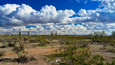 Desert Day.