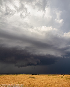 Kingfisher Supercell