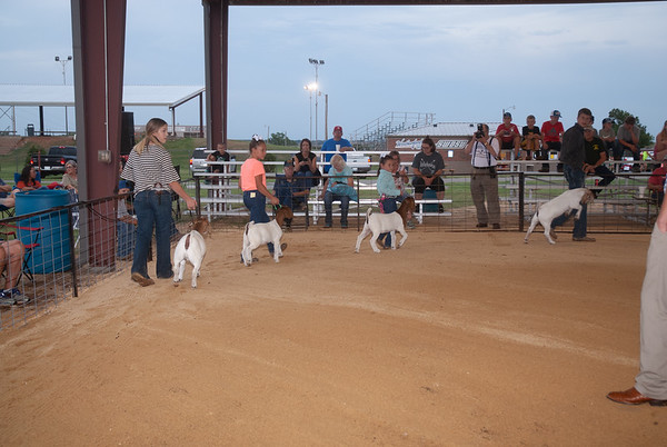 Weatherford Rt. 66 Classic Goats