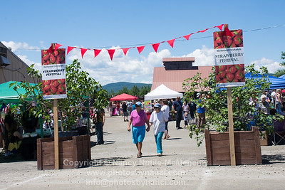 Wellwood Orchards 2nd Annual Strawberry Festival