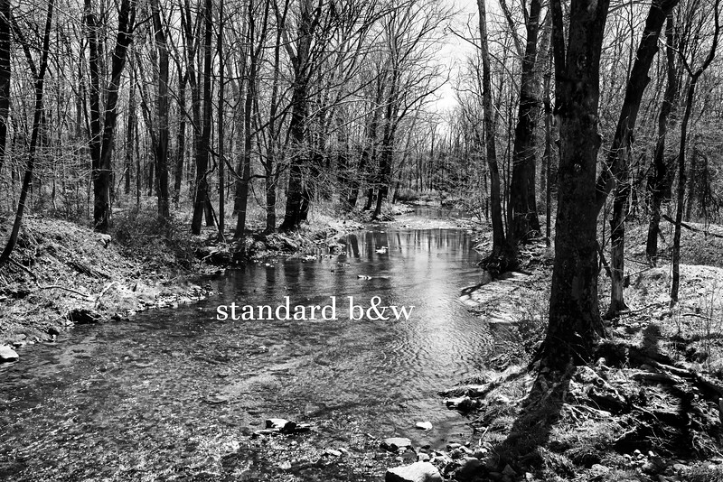 River 041616_0938 bw text