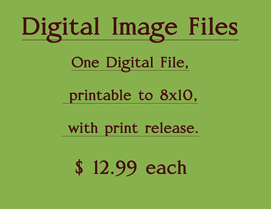 DigitalFilePrintRelease Block RN