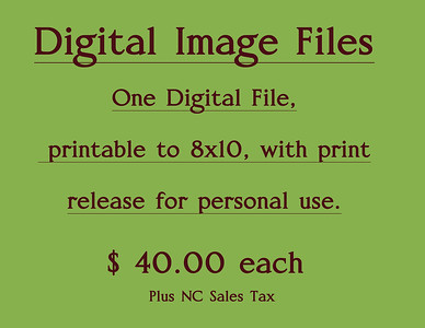 DigitalFilePrintRelease40 Block RN